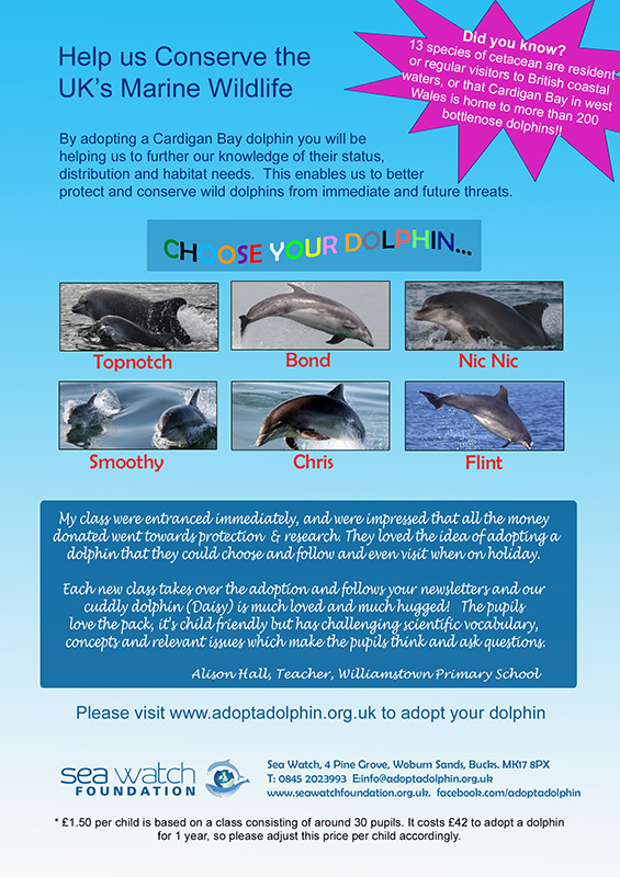 Adopt a Dolphin Outreach